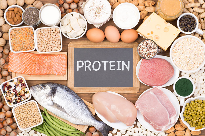 eat lots of protein